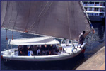 Egyptian sailboat called a Felucca