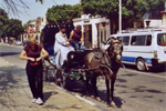 Carriage ride in Luxor
